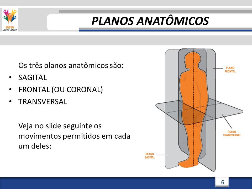 PLANOS ANATÔMICOS Os três planos anatômicos são: SAGITAL