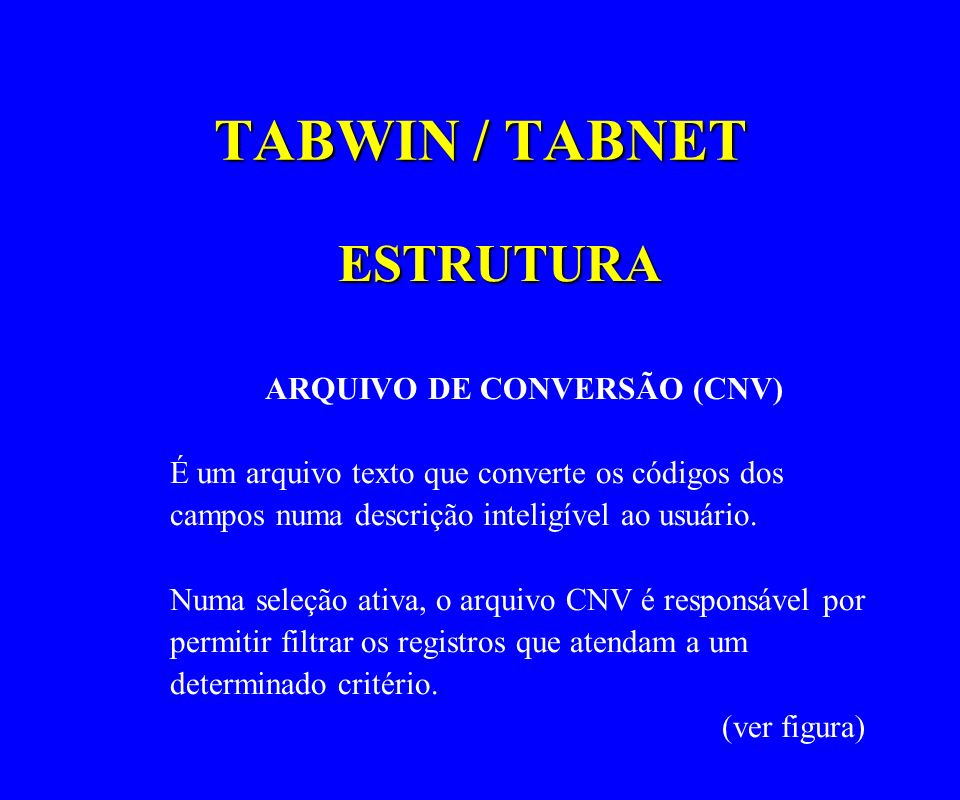 ARQUIVO DE CONVERSÃO (CNV)