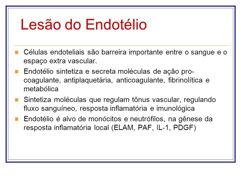 Lesão do Endotélio Células endoteliais são barreira importante entre o sangue e o espaço extra vascular.