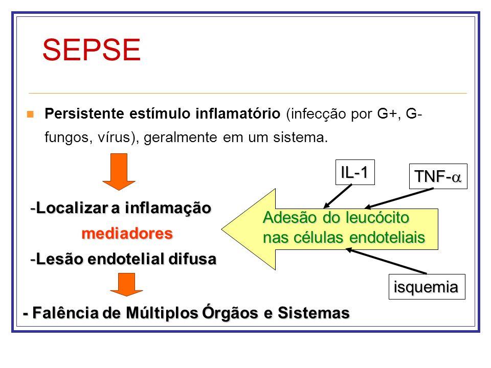 SEPSE IL-1 TNF-a Localizar a inflamação mediadores Adesão do leucócito