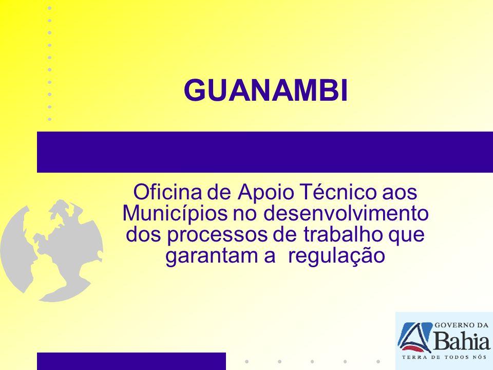 GUANAMBI Oficina de Apoio Técnico aos Municípios no desenvolvimento dos processos de trabalho que garantam a regulação.