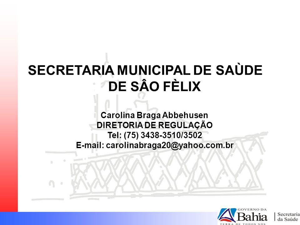 SECRETARIA MUNICIPAL DE SAÙDE DE SÂO FÈLIX