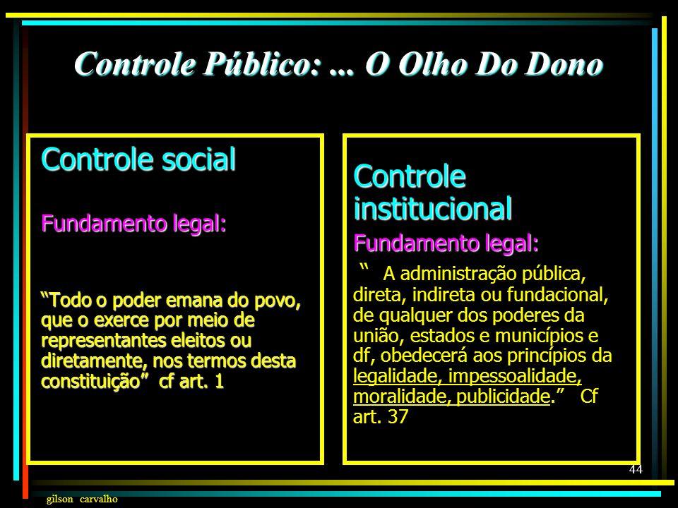 Controle Público: ... O Olho Do Dono