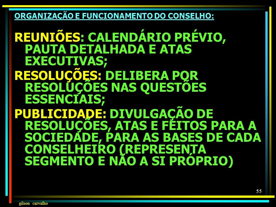 REUNIÕES: CALENDÁRIO PRÉVIO, PAUTA DETALHADA E ATAS EXECUTIVAS;