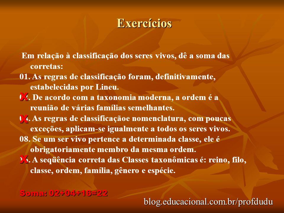 Exercícios X X X blog.educacional.com.br/profdudu