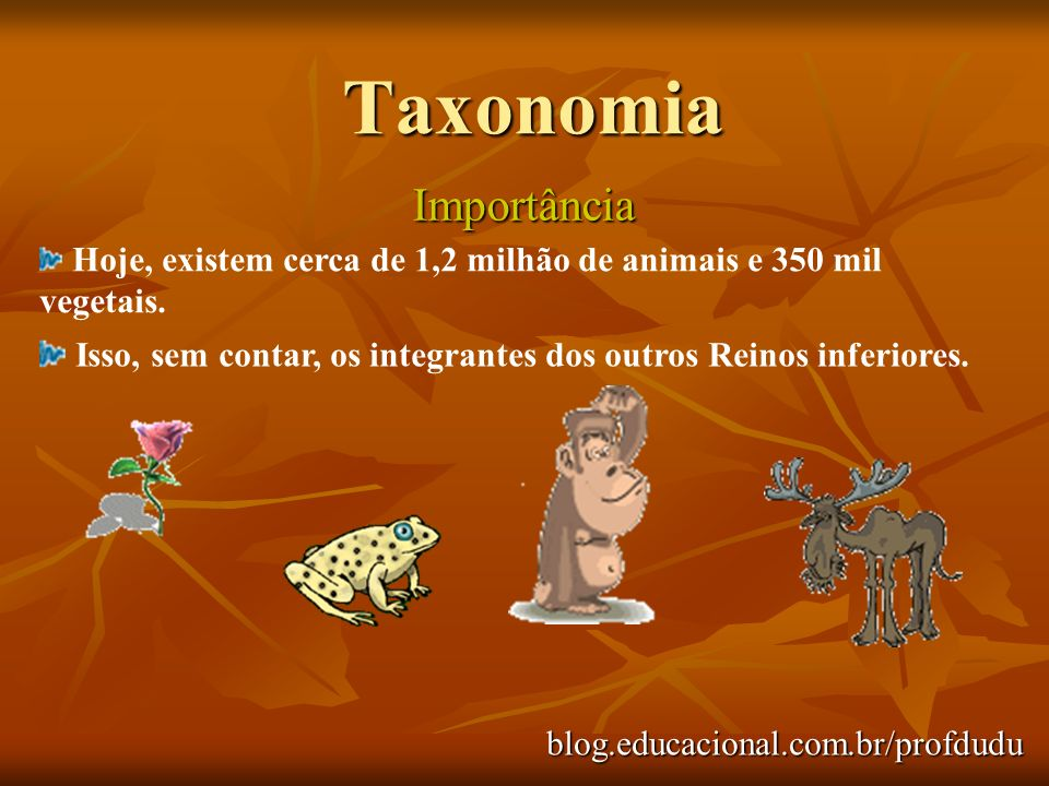 blog.educacional.com.br/profdudu