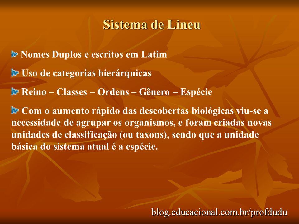 Sistema de Lineu Nomes Duplos e escritos em Latim