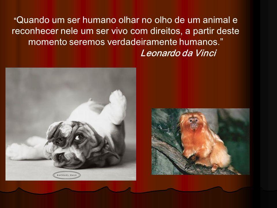 Quando um ser humano olhar no olho de um animal e reconhecer nele um ser vivo com direitos, a partir deste momento seremos verdadeiramente humanos. Leonardo da Vinci