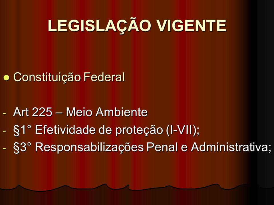 LEGISLAÇÃO VIGENTE Constituição Federal Art 225 – Meio Ambiente