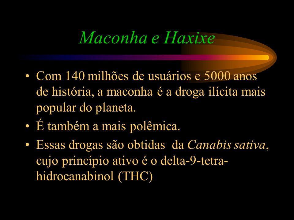 Maconha e HaxixeCom 140 milhões de usuários e 5000 anos de história, a maconha é a droga ilícita mais popular do planeta.