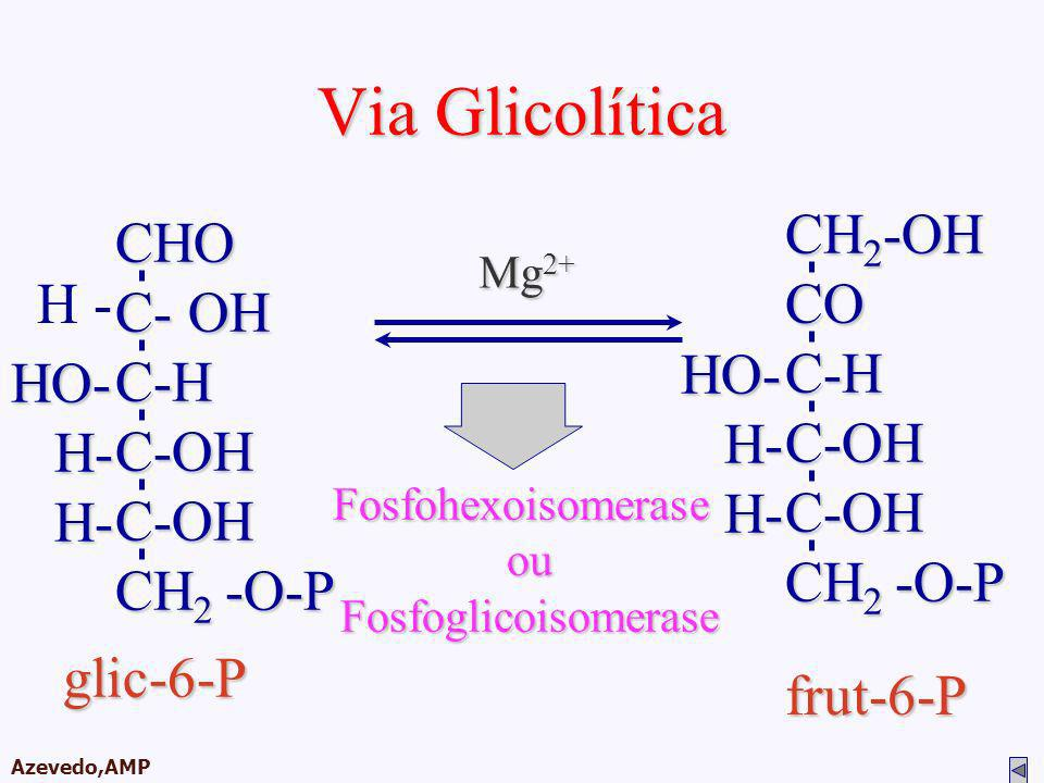 Via Glicolítica CH2-OH CO C-H C-OH CH2 -O-P HO- H- CHO C- OH C-H C-OH