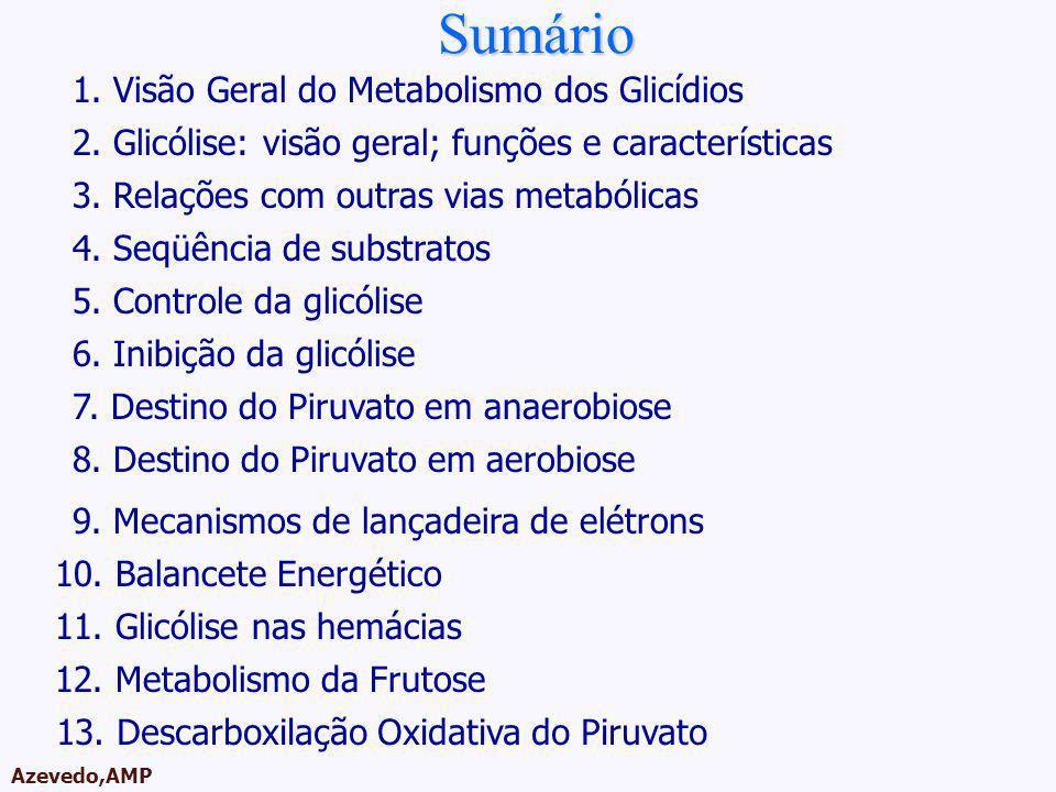 Sumário Roteiro da Aula 1. Visão Geral do Metabolismo dos Glicídios