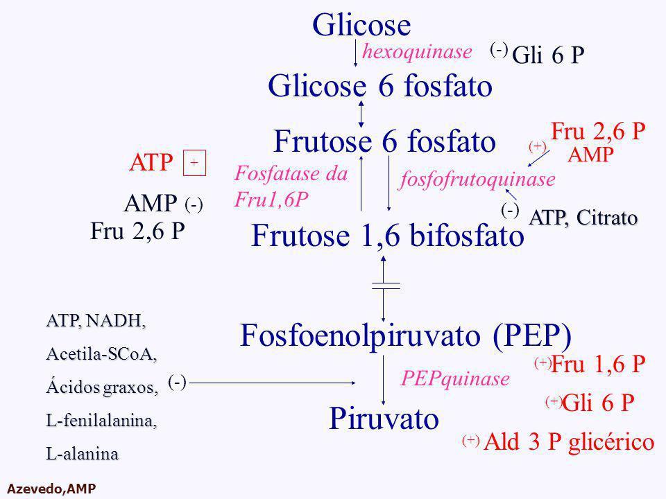 Fosfoenolpiruvato (PEP)