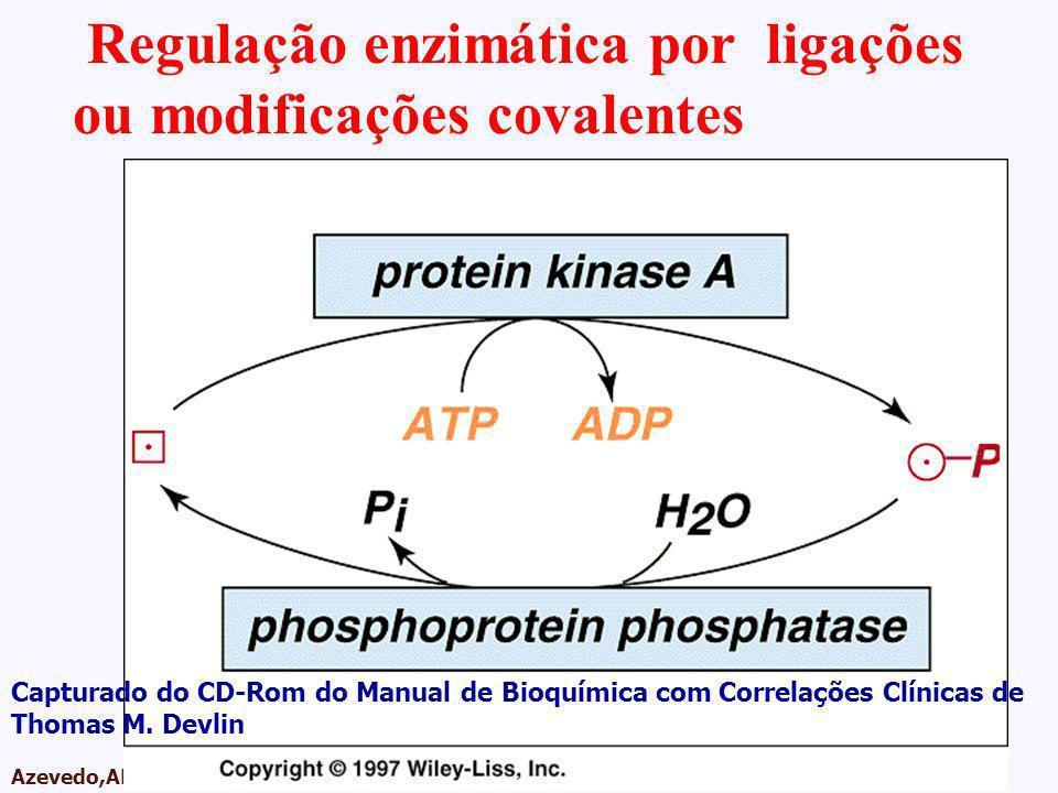 Regulação enzimática por ligações ou modificações covalentes