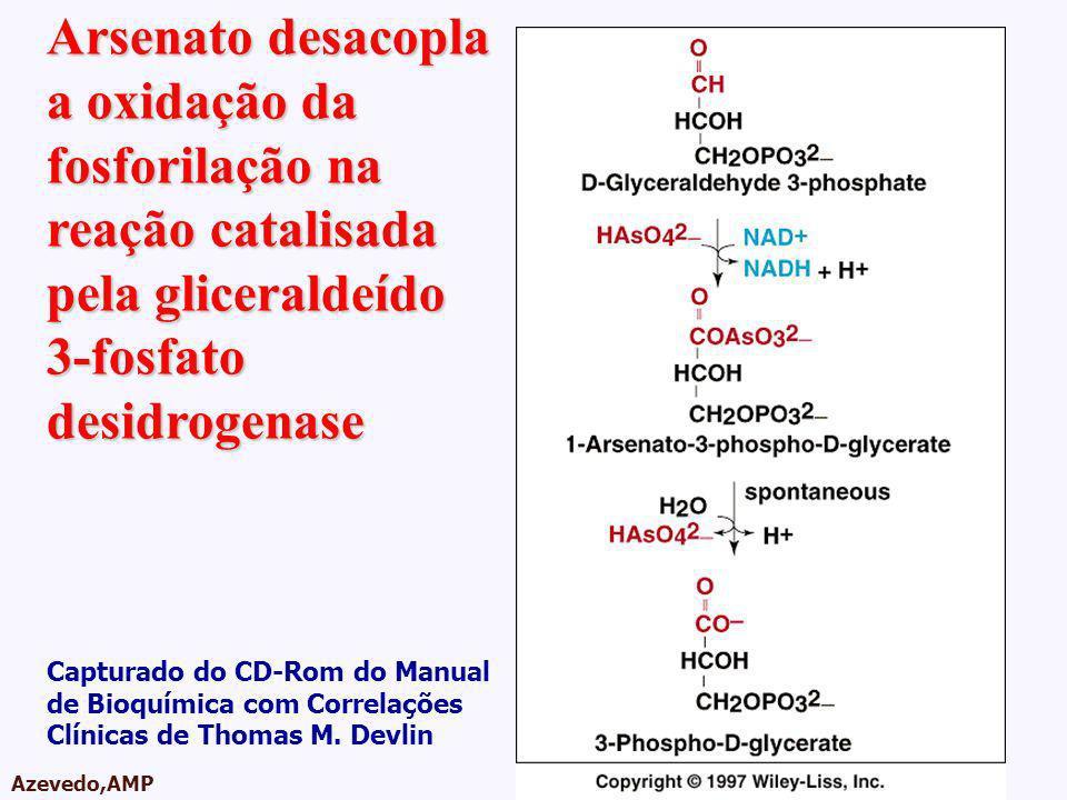 Arsenato desacopla a oxidação da fosforilação na reação catalisada pela gliceraldeído 3-fosfato desidrogenase