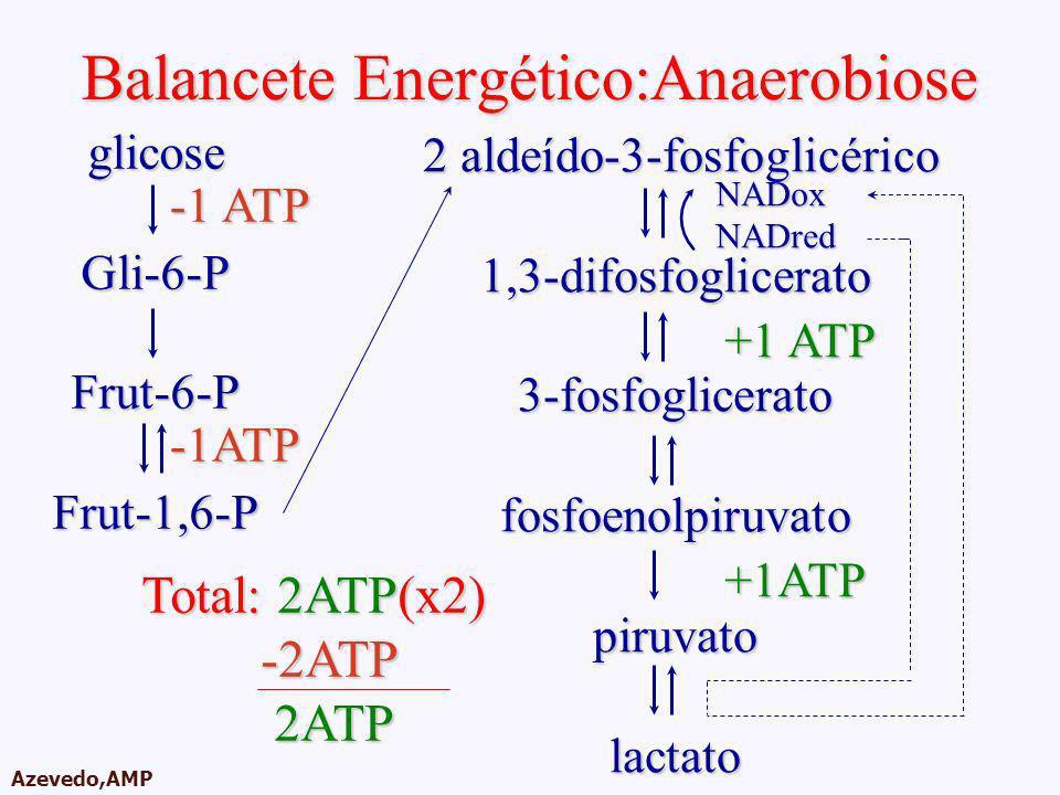 Balancete Energético:Anaerobiose