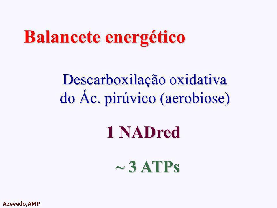 Balancete energético 1 NADred ~ 3 ATPs Descarboxilação oxidativa