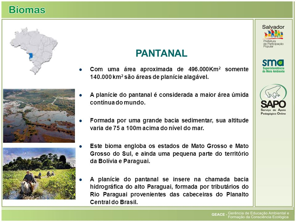 Pantanal PANTANAL. Com uma área aproximada de 496.000Km2 somente 140.000 km2 são áreas de planície alagável.