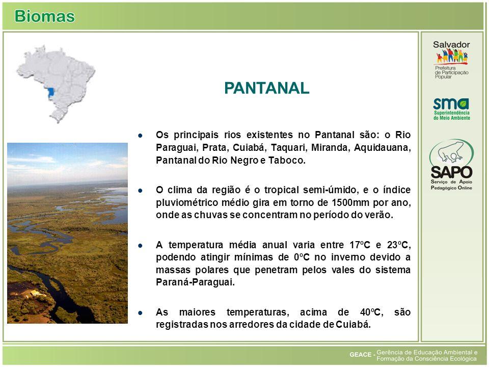 Pantanal PANTANAL.