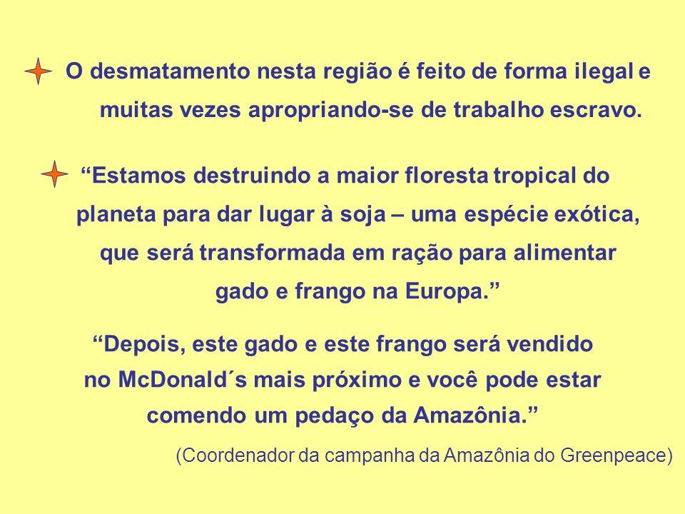(Coordenador da campanha da Amazônia do Greenpeace)
