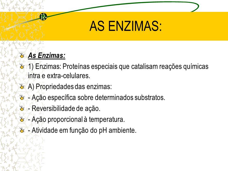 AS ENZIMAS: As Enzimas: