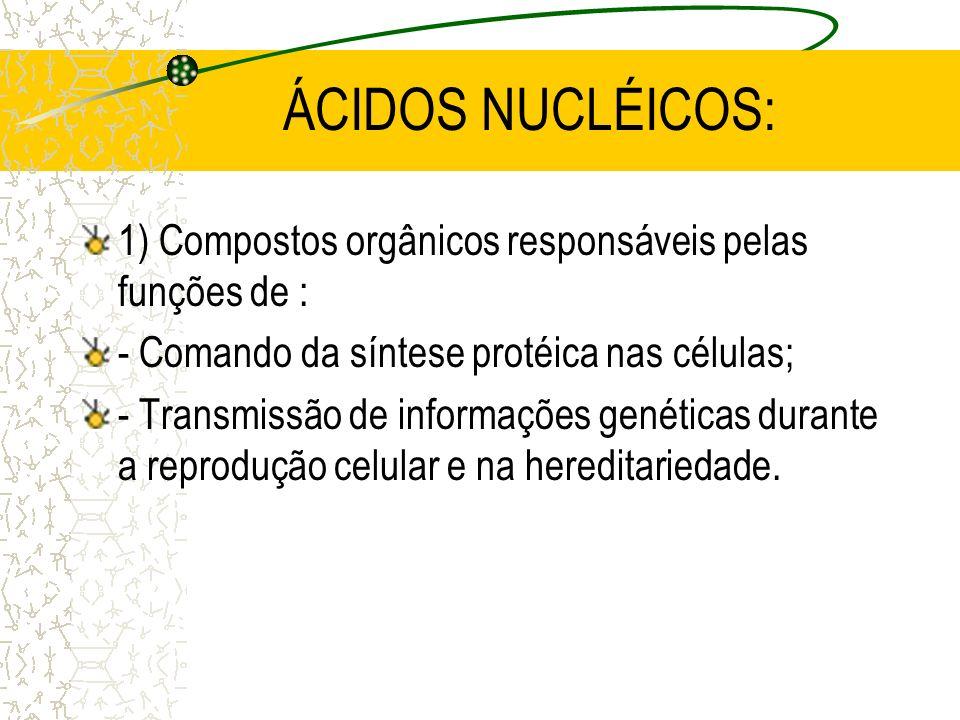 ÁCIDOS NUCLÉICOS: 1) Compostos orgânicos responsáveis pelas funções de : - Comando da síntese protéica nas células;