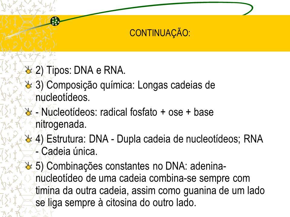 3) Composição química: Longas cadeias de nucleotídeos.