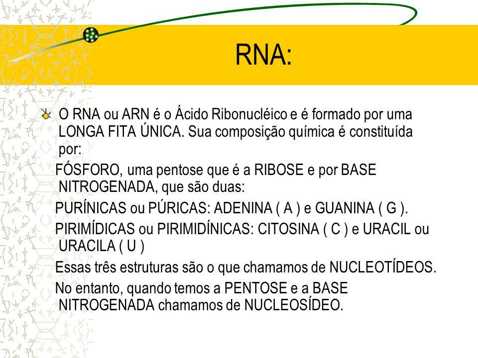 RNA:O RNA ou ARN é o Ácido Ribonucléico e é formado por uma LONGA FITA ÚNICA. Sua composição química é constituída por: