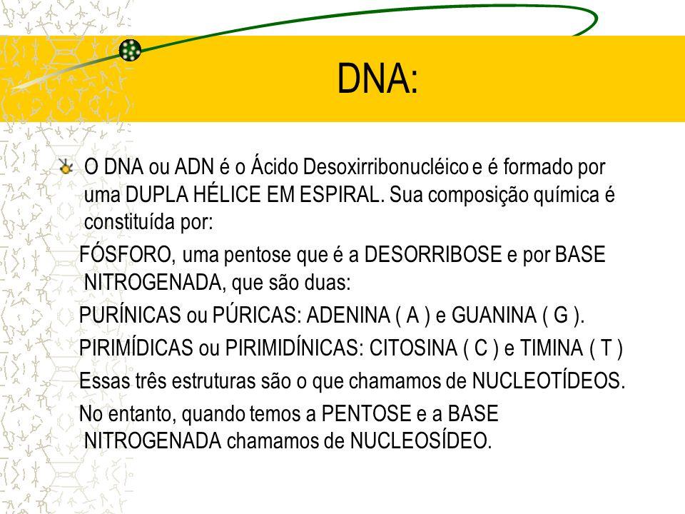 DNA: O DNA ou ADN é o Ácido Desoxirribonucléico e é formado por uma DUPLA HÉLICE EM ESPIRAL. Sua composição química é constituída por: