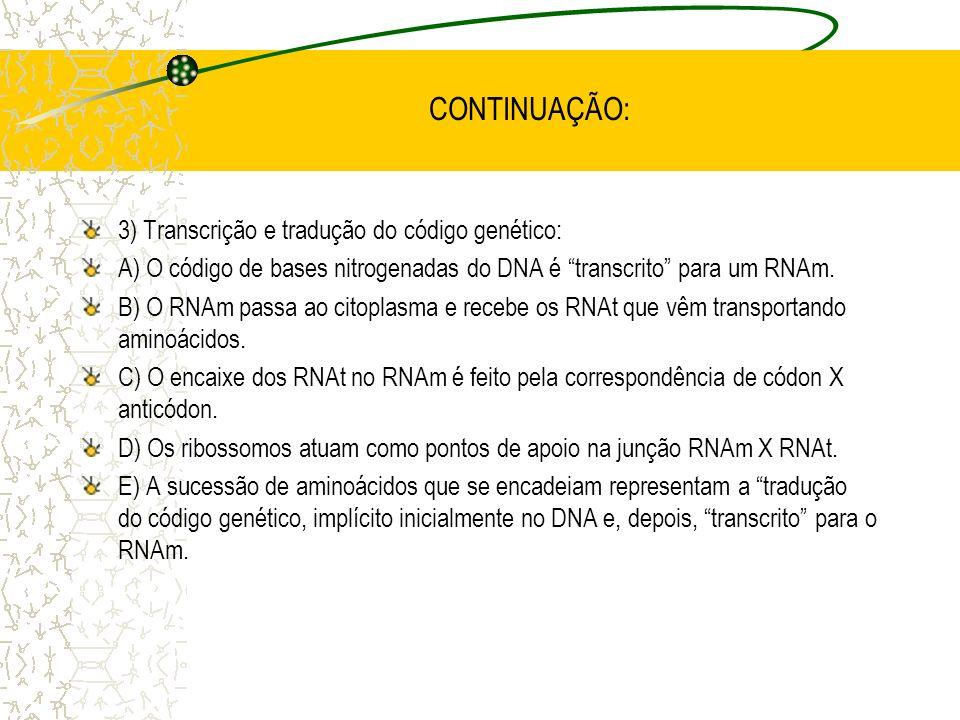 CONTINUAÇÃO: 3) Transcrição e tradução do código genético: