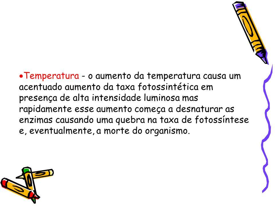 Temperatura - o aumento da temperatura causa um acentuado aumento da taxa fotossintética em presença de alta intensidade luminosa mas rapidamente esse aumento começa a desnaturar as enzimas causando uma quebra na taxa de fotossíntese e, eventualmente, a morte do organismo.