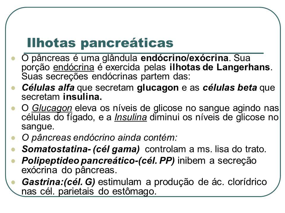 Ilhotas pancreáticas