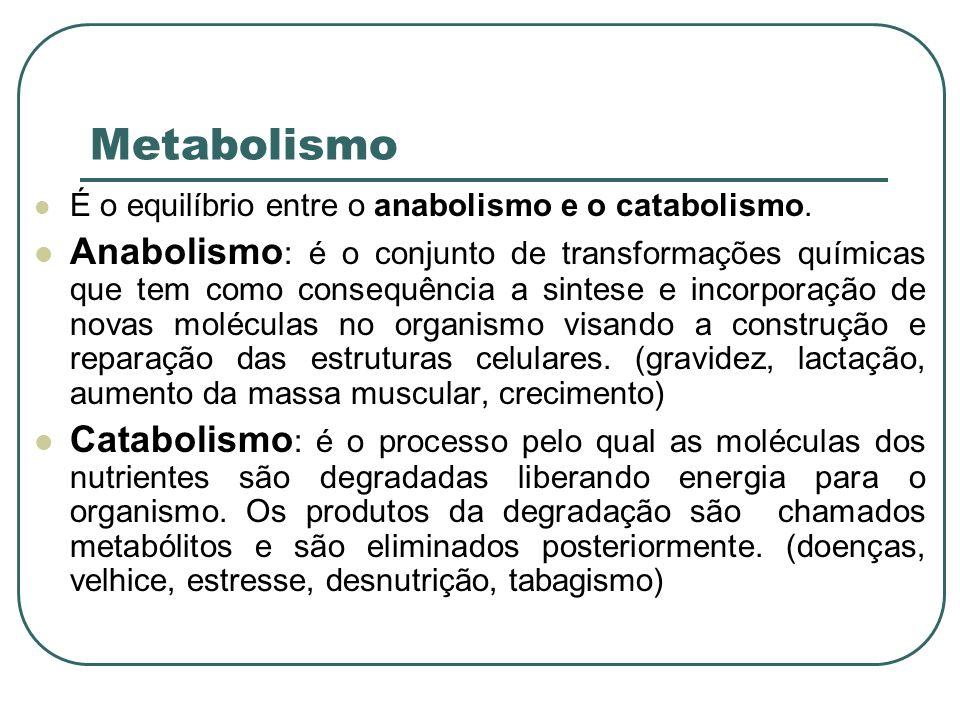 Metabolismo É o equilíbrio entre o anabolismo e o catabolismo.