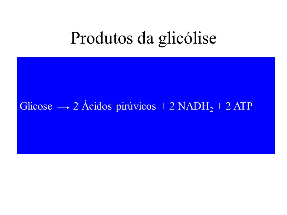 Produtos da glicólise Glicose 2 Ácidos pirúvicos + 2 NADH2 + 2 ATP