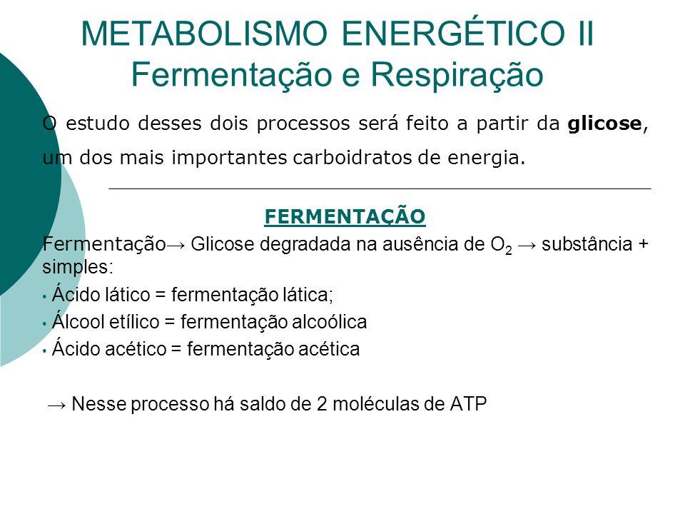 METABOLISMO ENERGÉTICO II Fermentação e Respiração