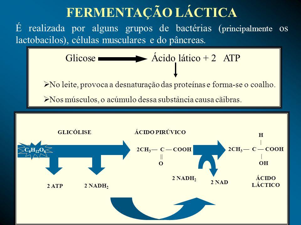 Glicose Ácido lático + 2 ATP