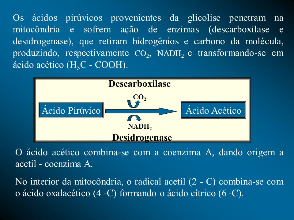 Descarboxilase Desidrogenase