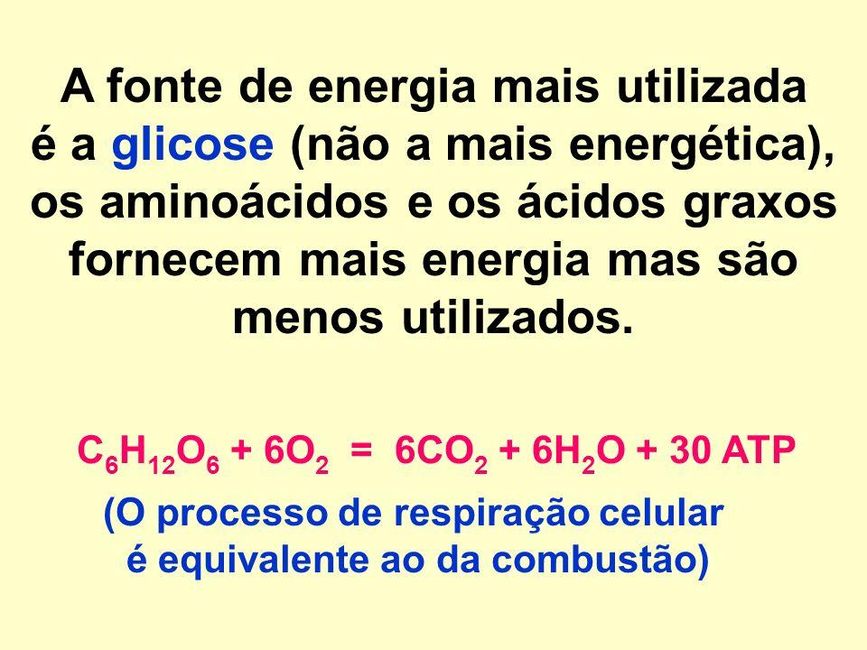 A fonte de energia mais utilizada