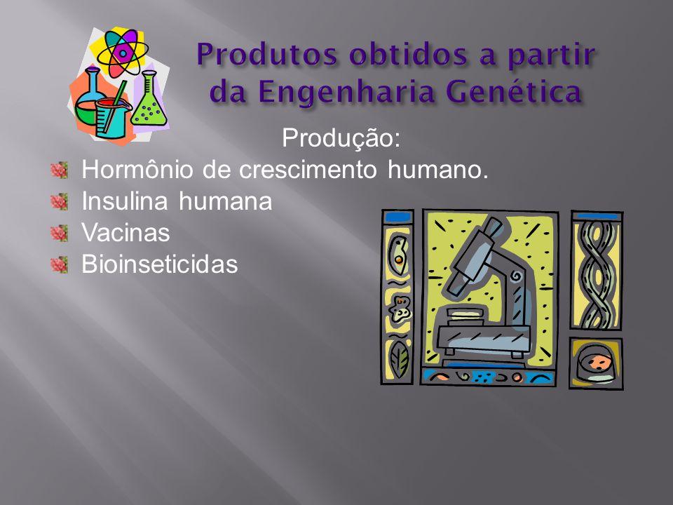 Produtos obtidos a partir da Engenharia Genética