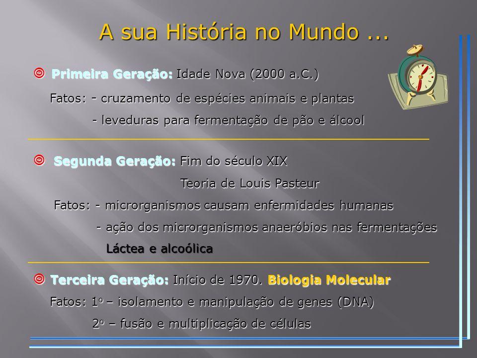 A sua História no Mundo ...  Primeira Geração: Idade Nova (2000 a.C.)
