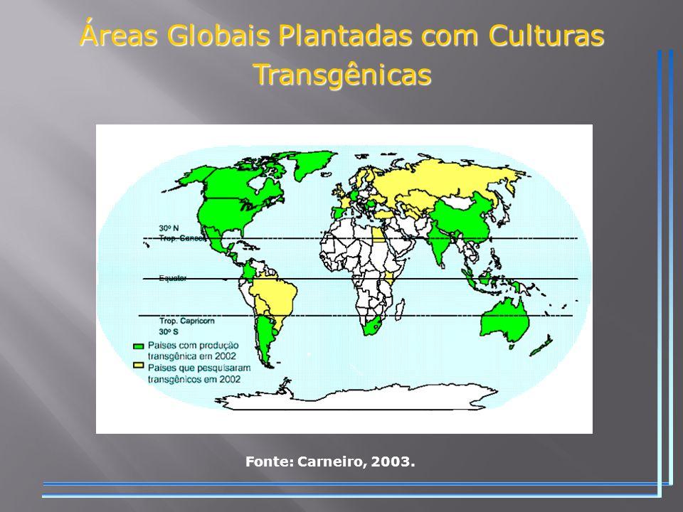 Áreas Globais Plantadas com Culturas Transgênicas