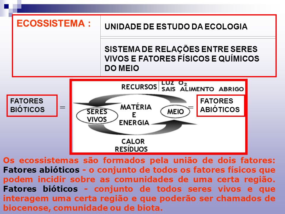 ECOSSISTEMA : = = UNIDADE DE ESTUDO DA ECOLOGIA