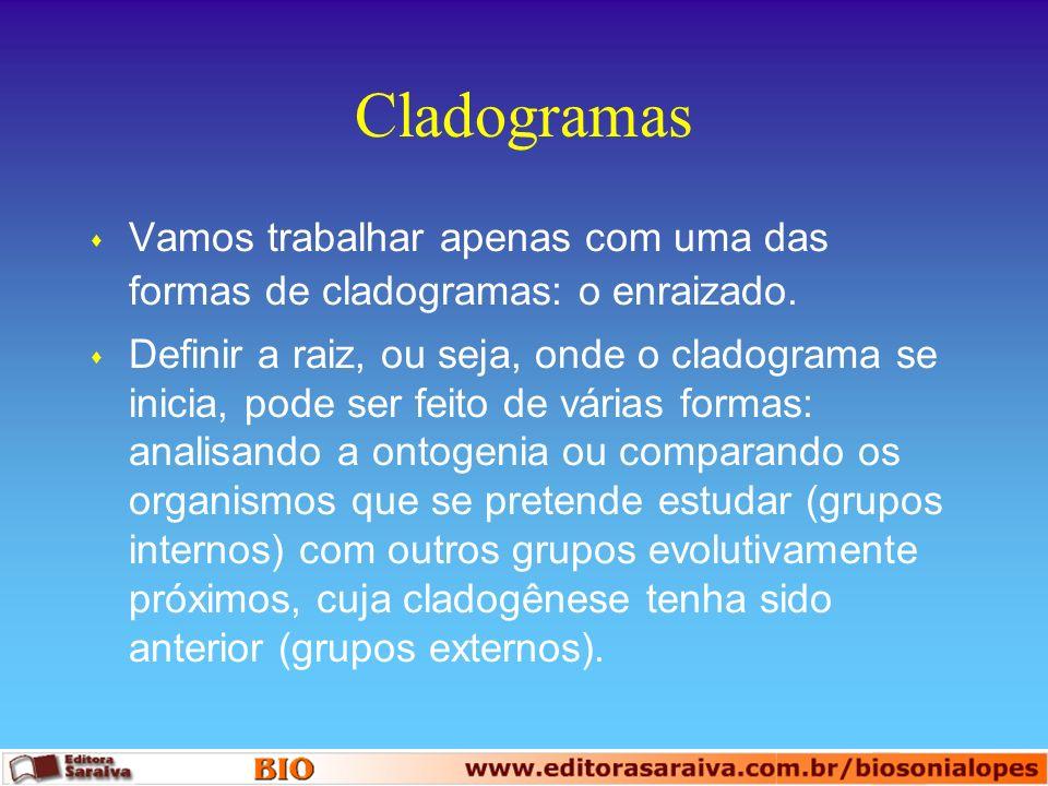 Cladogramas Vamos trabalhar apenas com uma das formas de cladogramas: o enraizado.