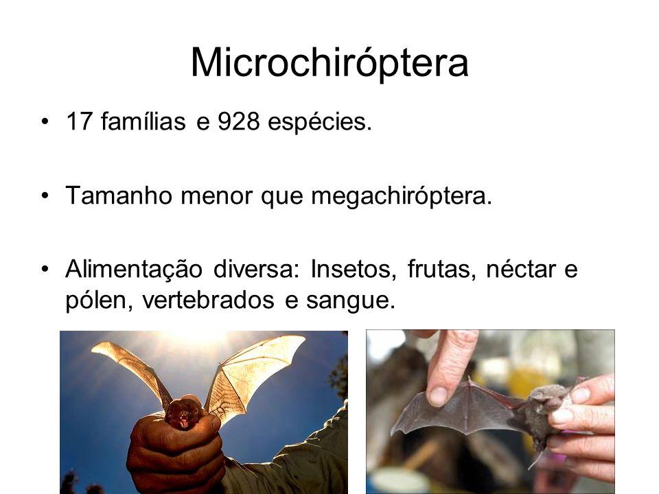 Microchiróptera 17 famílias e 928 espécies.