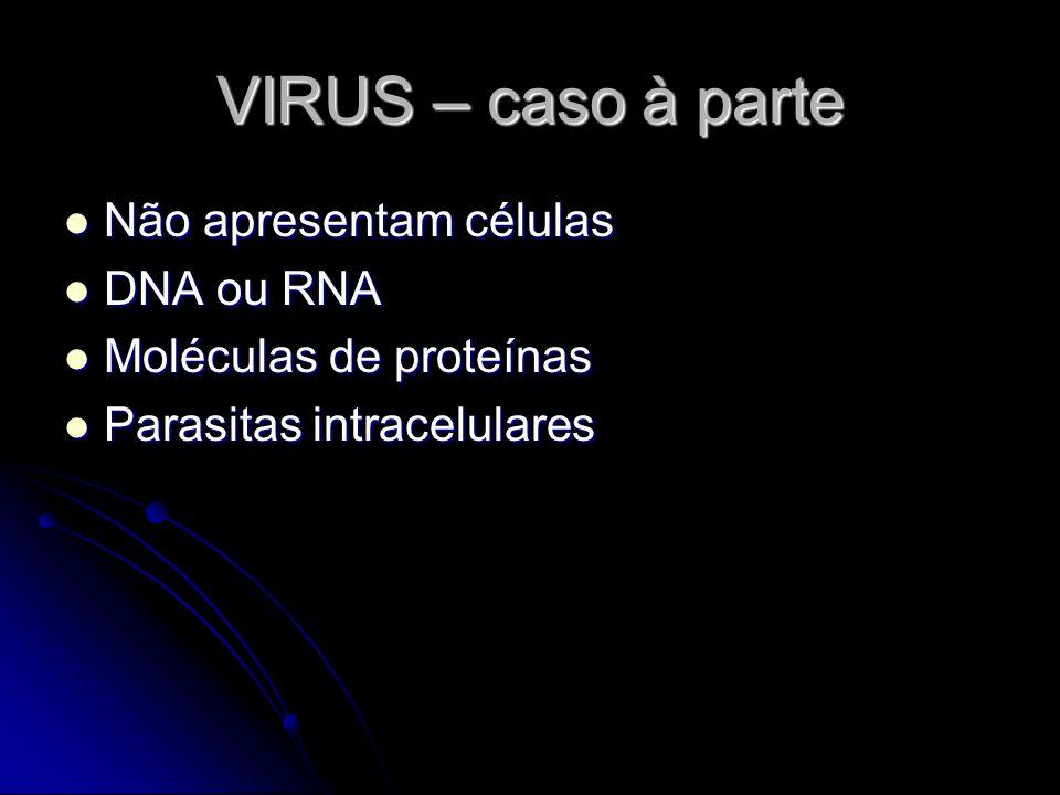 VIRUS – caso à parte Não apresentam células DNA ou RNA