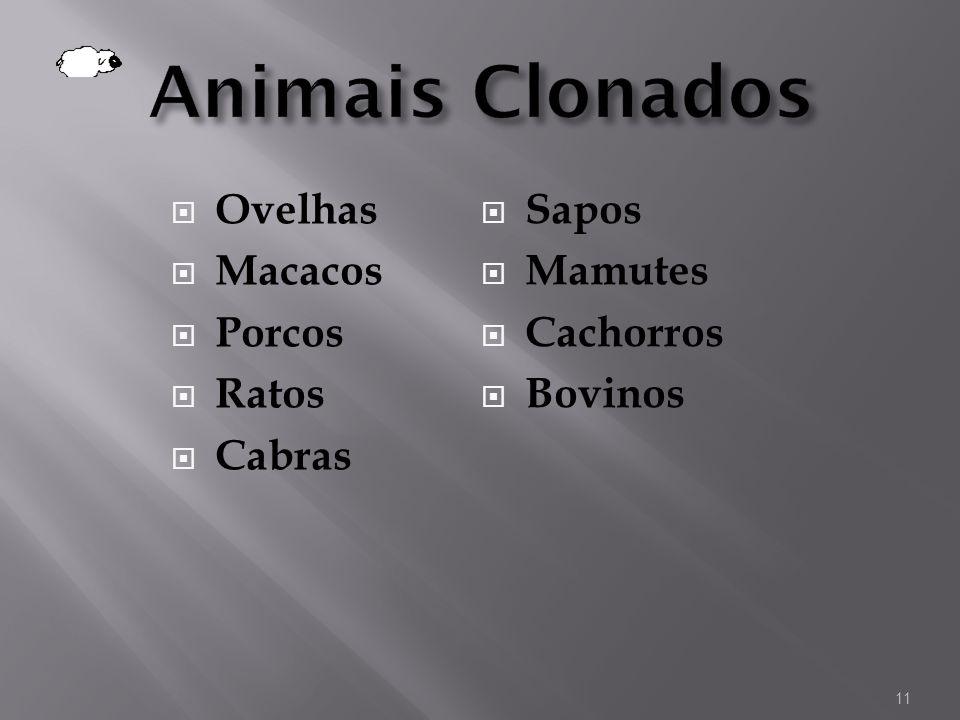 Animais Clonados Ovelhas Macacos Porcos Ratos Cabras Sapos Mamutes