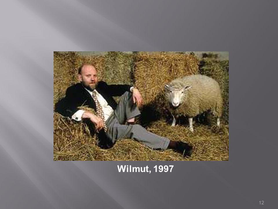 Wilmut, 1997