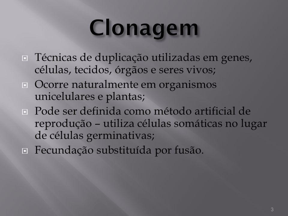 Clonagem Técnicas de duplicação utilizadas em genes, células, tecidos, órgãos e seres vivos;