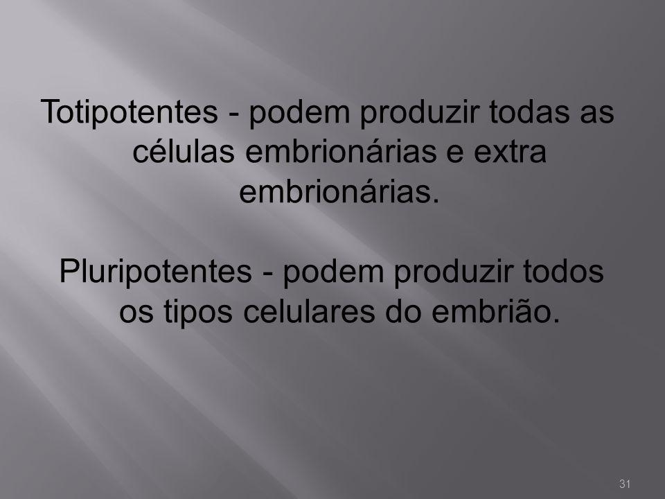 Pluripotentes - podem produzir todos os tipos celulares do embrião.