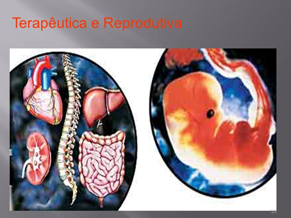 Terapêutica e Reprodutiva